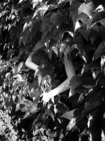 Weinlaub, Fotografie, Arm, Neugier