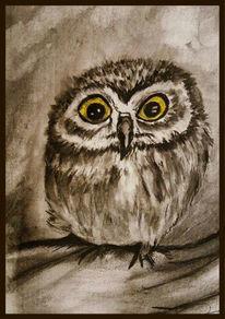 Eule, Vogel, Malerei