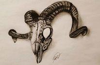Schädel, 3d, Horn, Kohlezeichnung