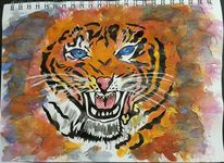 Gesicht, Tiger, Wasserfarben, Aquarell