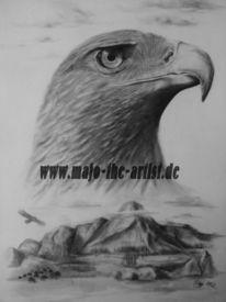 Zeichnung, Adler, Grafik, Bleistiftzeichnung