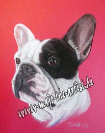 Pastellmalerei, Grafik, Zeichnung, Hund