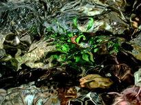 Quelle, Farben, Elemente, Wasser