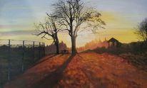 Baum, Holzappel, Sonnenaufgang, Zaun