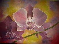 Orchidee, Lila, Pflanzen, Malerei