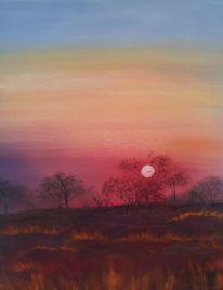 Sonnenaufgang, Bunt, Landschaft, Busch