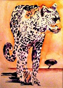 Gepard, Afrika, Savanne, Modern
