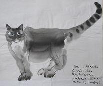 Zeichnung, Kater oskar, Sumi, Malerei