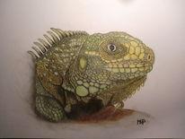 Schuppen, Pastellmalerei, Varan, Reptil