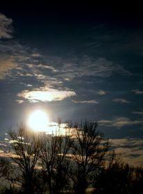 Wolken, Sonne, Licht, Baum