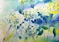 Blau, Gelb, Hortensien, Aquarell