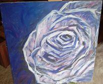 Blumen, Lila, Blau, Bunt