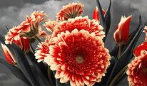 Blumenstrauß, Wandbild, Orange, Natur