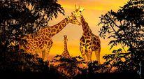 Afrika, Fotografie, Tiere, Park