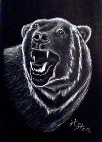 Zeichnung, Tiere, Kreide, Pastellmalerei