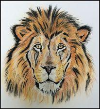 Löwe, Pastellmalerei, Zeichnungen