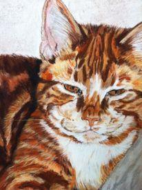 Portraitzeichnung, Portrait, Katzenzeichnung, Pastellmalerei