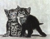 Pastellmalerei, Katzenportrait, Katzenzeichnung, Portraitzeichnung