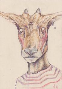 Tiere, Portrait, Ziegen, Fell