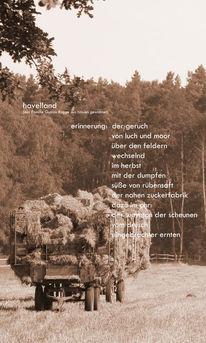 Gerhard kerfin, Havelland, Nauen, Collage