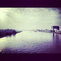 Rhein, Ufer, Kranhäuser, Köln