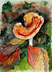 Fliegenpilz, Wald, Blätter, Pilze
