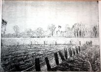 Koppel, Weide, Zaun, Bauernhof