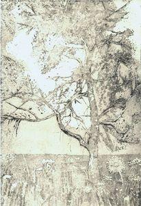 Schwarz weiß, Leben, Baum, Radierung