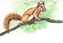 Lebewesen, Eichhörnchen, Tiere, Äste
