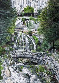 Wald, Baum, Felsen, Wasserfall