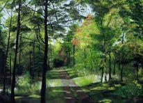 Laub, Weg, Spaziergang, Blätter