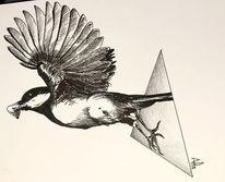 Vogel, Kohlmeise, Geometrie, Tuschmalerei