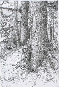 Baum, Wald, Zeichnungen, Tuschezeichnungen