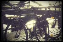 Wasserspiegelung, Fahrrad, Hamburg, Sonne