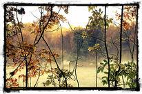 Bunt, Landschaft, Herbst, Blätter