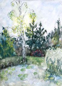 Aquarell, Birkenwald