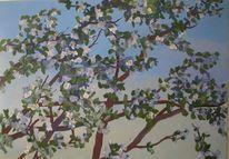 Obstbaum, Baum, Blüte, Naturalistisch