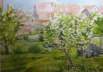 Dinkelsbühl, Frühling, Baumblüte, Aquarell