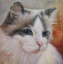 Katze, Acrylmalerei, Desidora, Katze gemalt