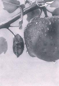 Apfel, Herbst, Tropfen, Zeichnungen