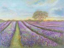 Ölmalerei, Blumen, Lavendel, Sommer
