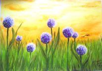 Licht, Pflanzen, Stimmung, Landschaft