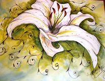 Blumen, Lilie, Pflanzen, Harmonie