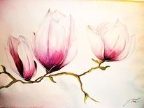 Pflanzen, Blumen, Aquarellmalerei, Magnolien