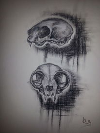 Katze, Tod, Pastellmalerei, Grau