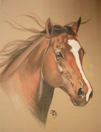 Crome, Pferde, Viertel, Malerei