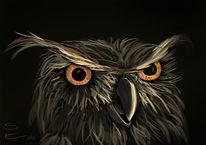 Nacht, Eule, Augen, Malerei