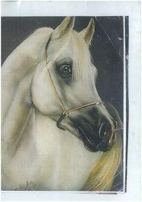 Pferde, Realismus, Tiere, Malerei