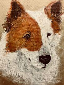 Pastellmalerei, Hundeportrait, Hund, Malerei