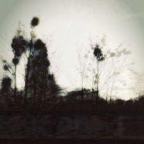 Mischtechnik, Fotografie, Natur, Surreal